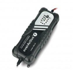 Nabíječka baterií, automatická nabíječka do auta pro 12V / 24V